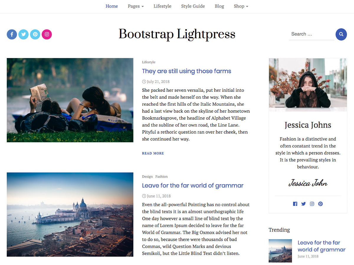 Bootstrap Lightpress WordPress shopping theme