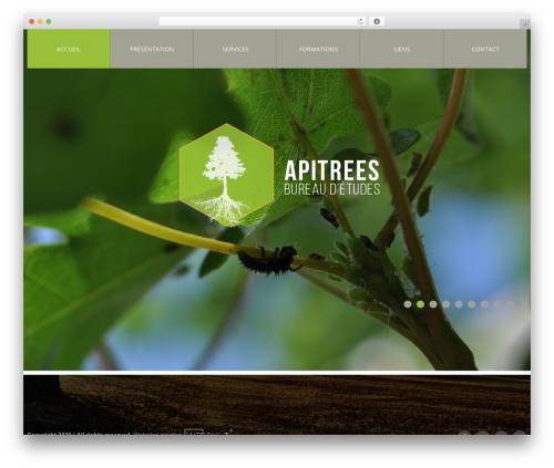 cherry best WordPress theme - apitrees.be