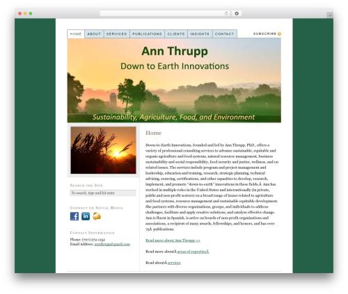 Thesis theme WordPress - annthrupp.net