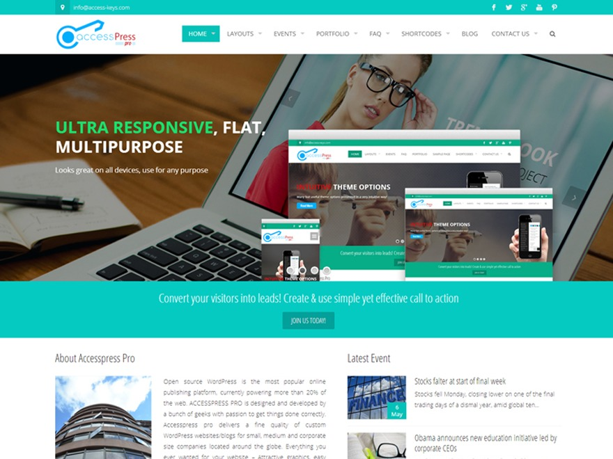 AccessPress Pro WordPress portfolio template