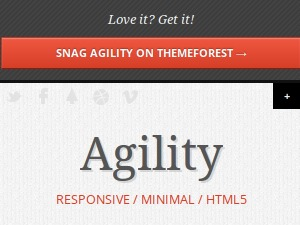 Agility WordPress theme design