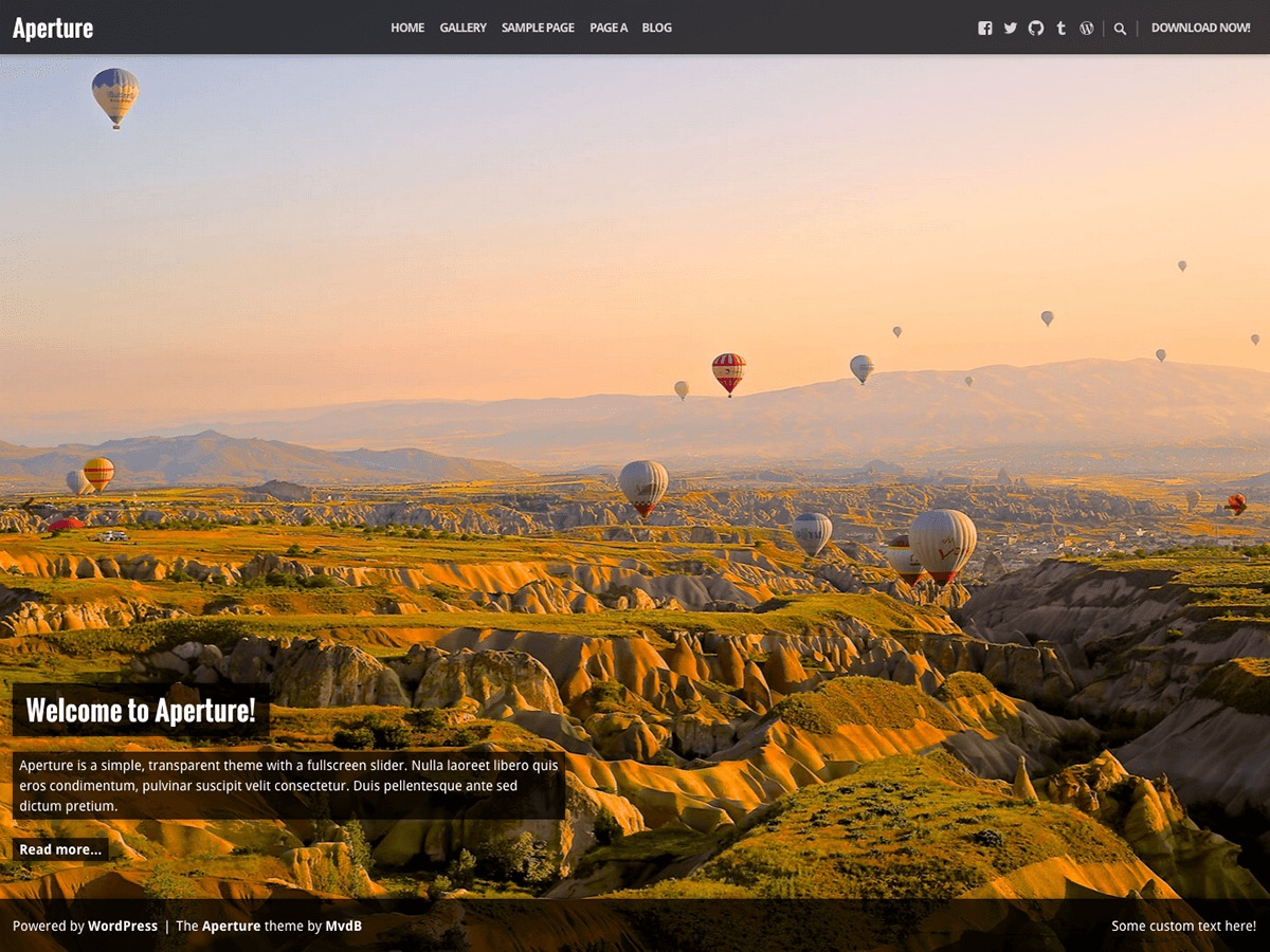 Aperture template WordPress free