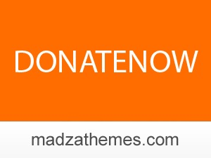 Best WordPress template DonateNow