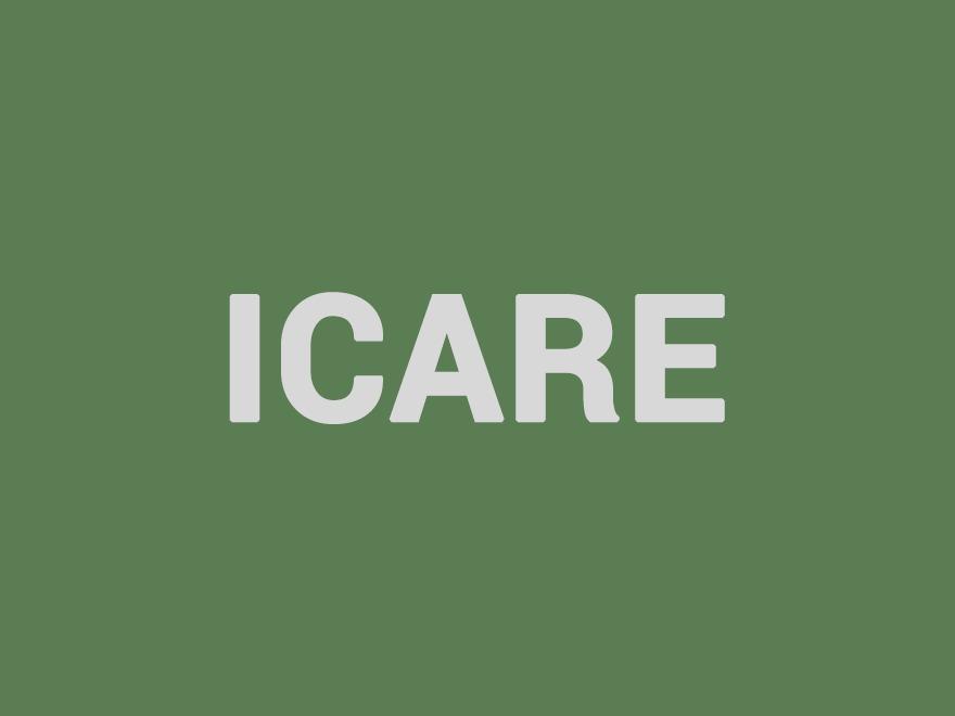 Best WordPress theme ICARE - Nonprofit, Fundraising WordPress Theme