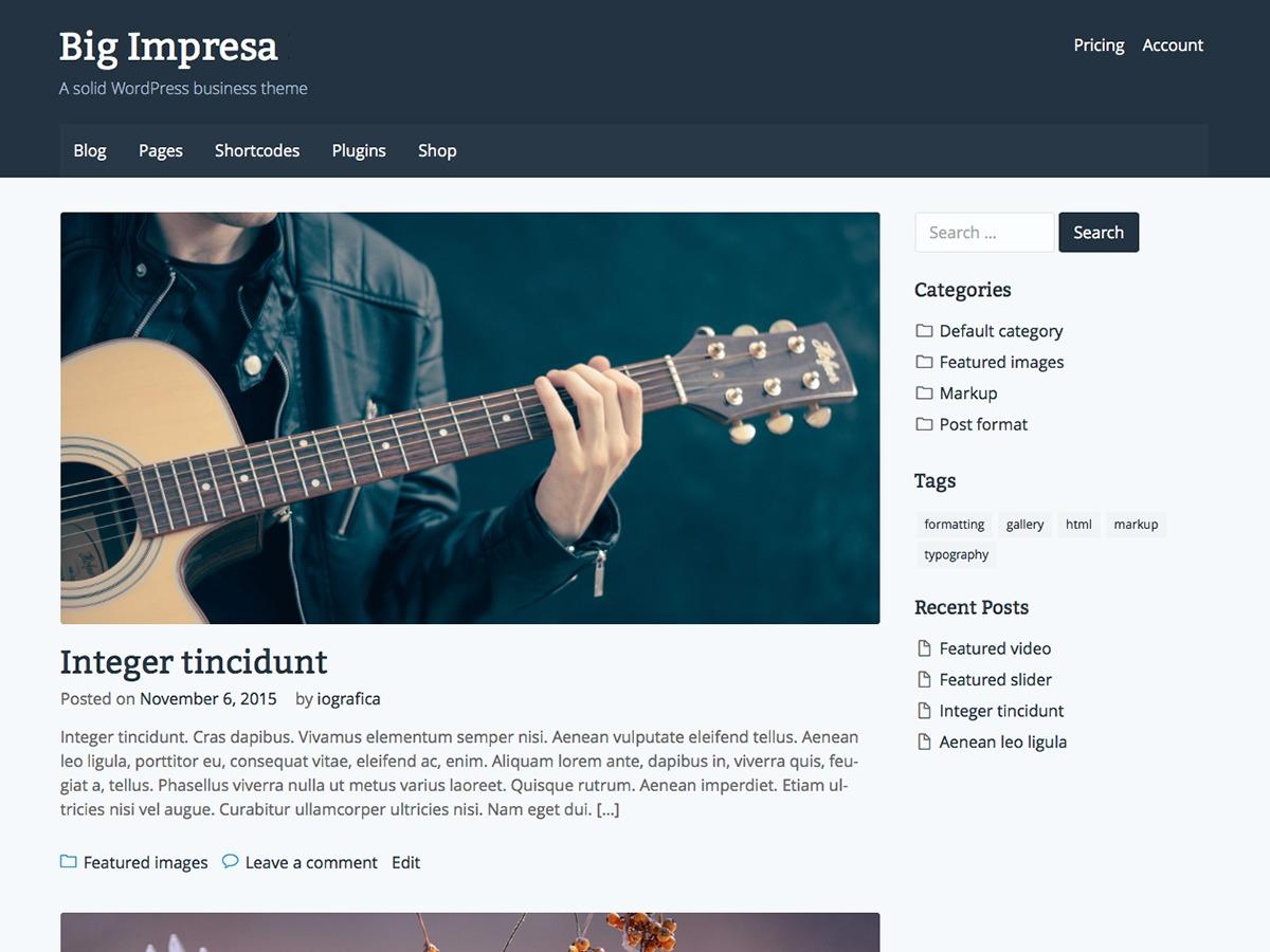 Big Impresa WordPress shop theme