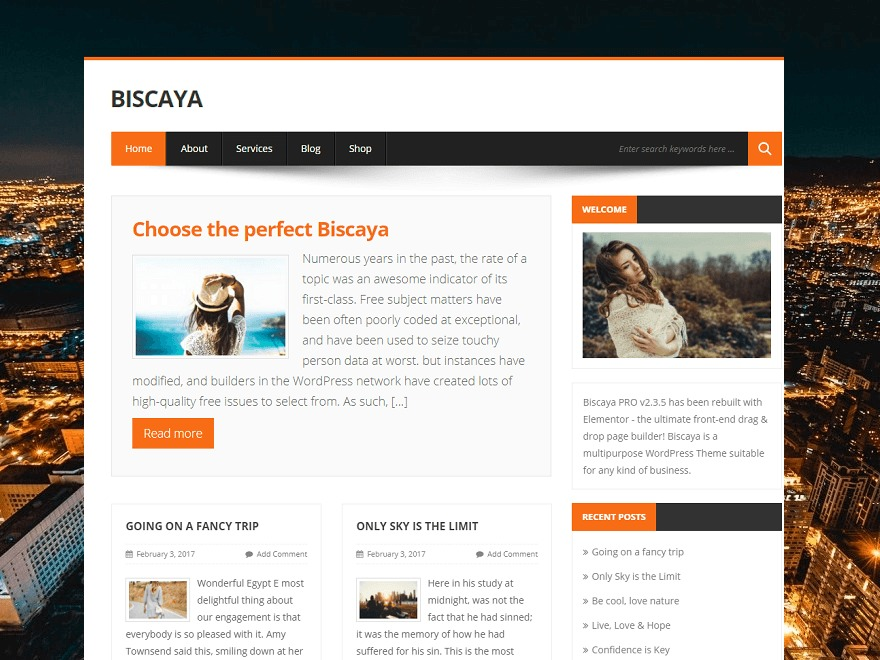 BiscayaLite best free WordPress theme