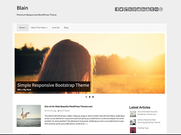 Blain free WordPress theme