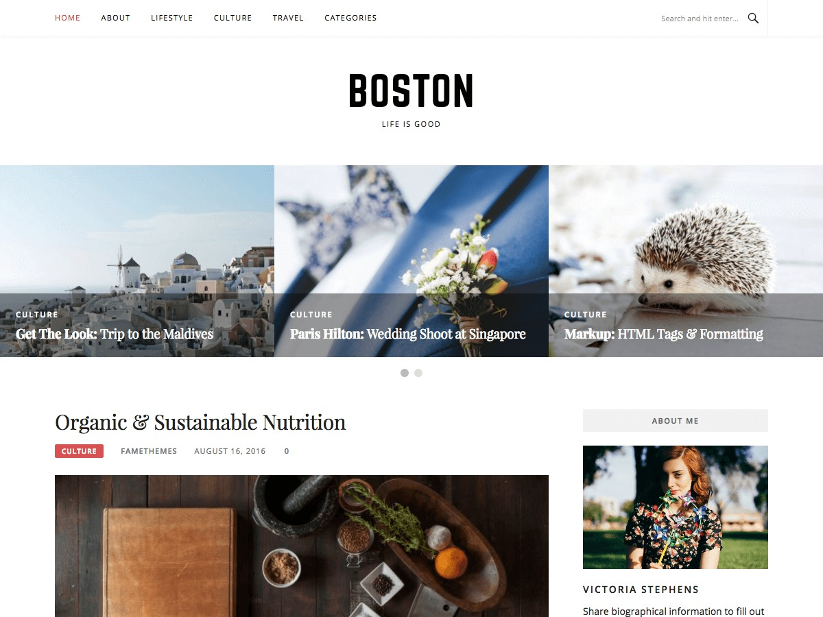 Boston WordPress theme free download
