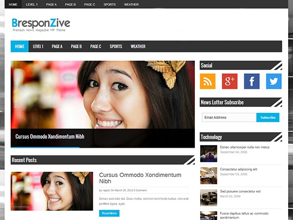 BresponZive WordPress news template