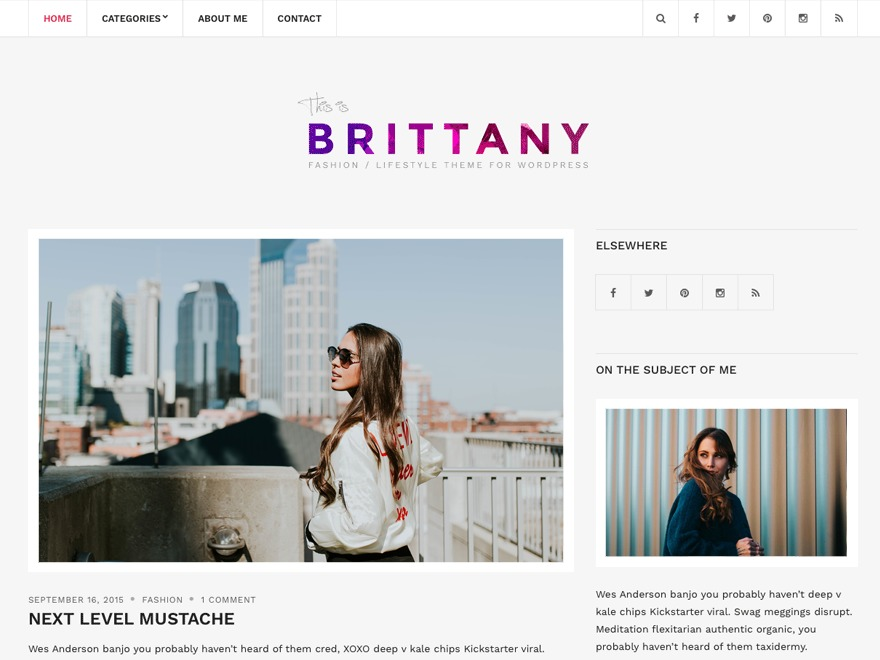 Brittany Light free WP theme