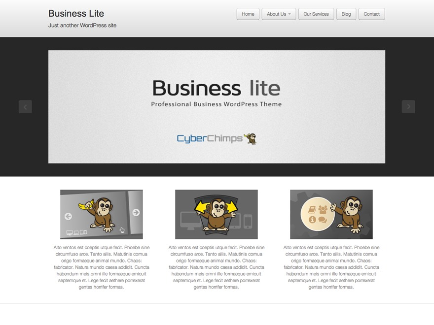 Business lite free WordPress theme