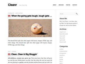 Cleanr top WordPress theme