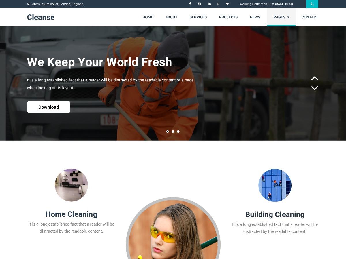Cleanse template WordPress free
