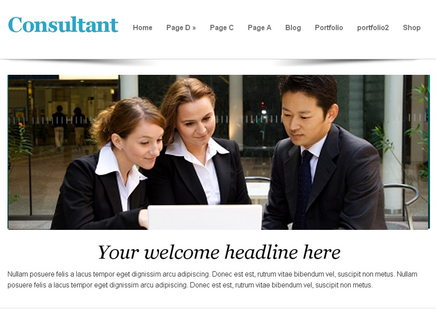 consultant company WordPress theme