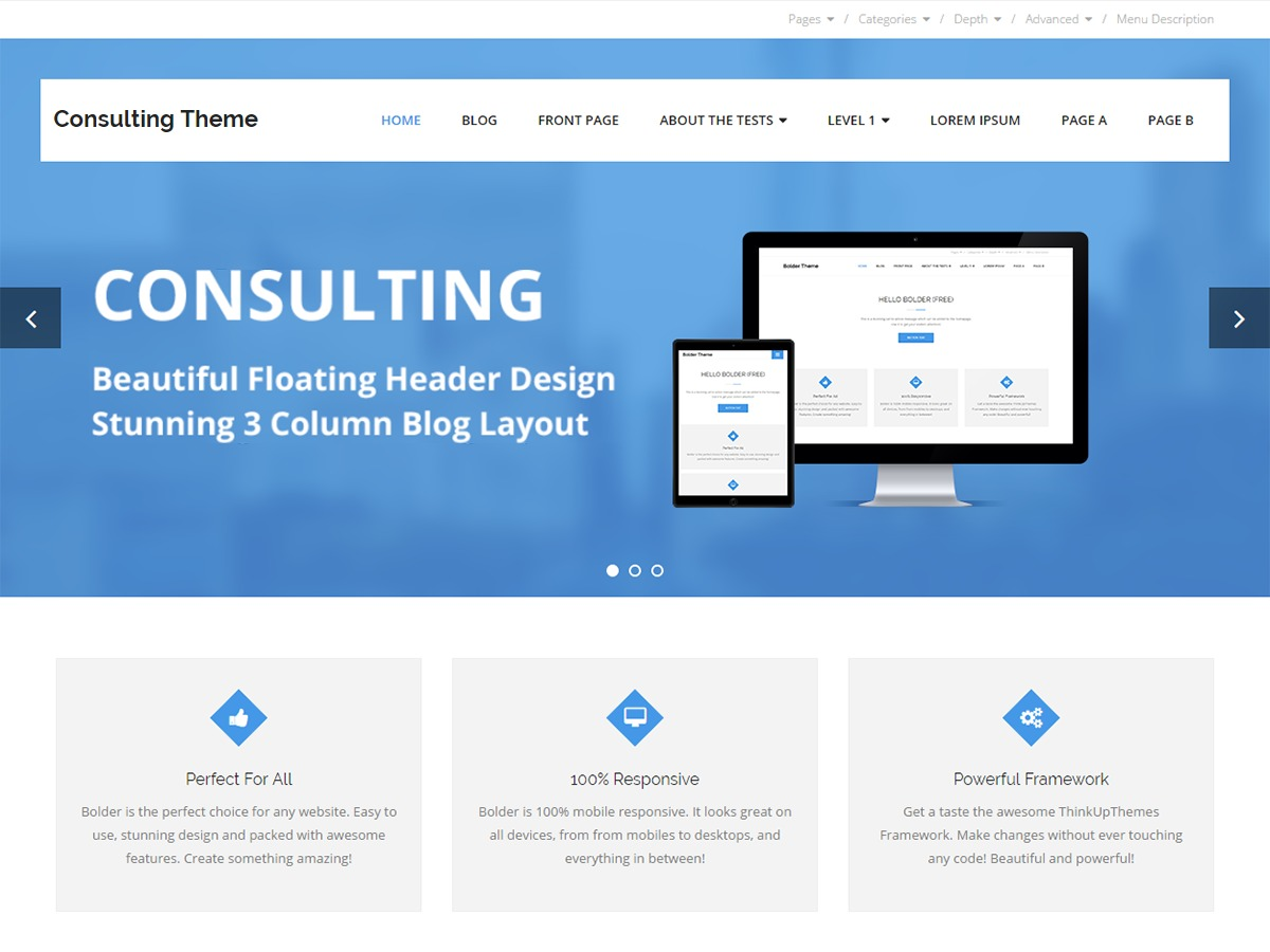 Consulting WordPress blog theme