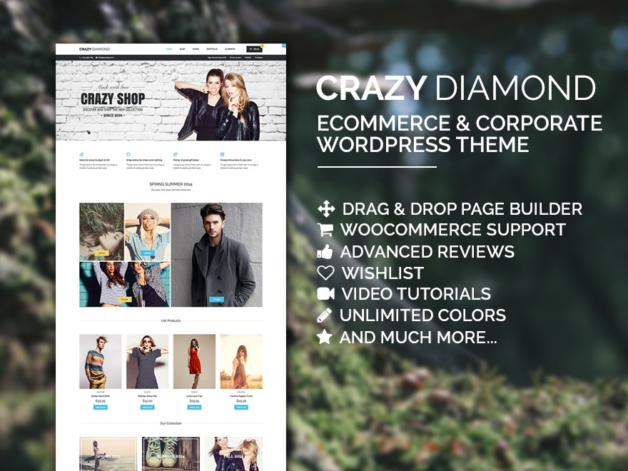 Crazy Diamond WordPress store theme
