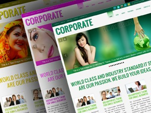 D5 CORPORATE business WordPress theme