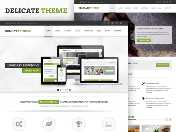 Delicate WordPress portfolio theme
