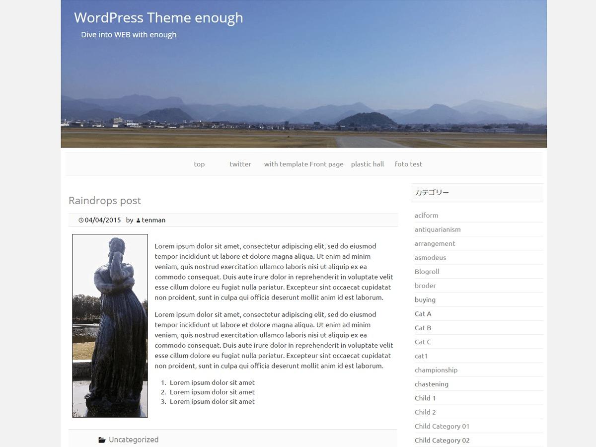 Enough free WP theme