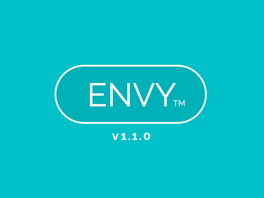 Envy WordPress shop theme