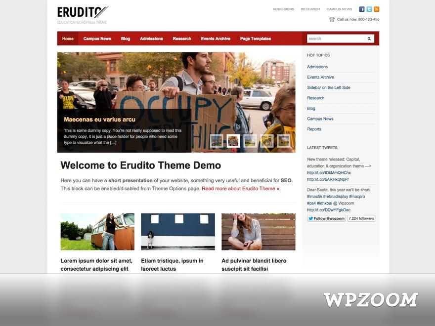 Erudito WordPress theme design