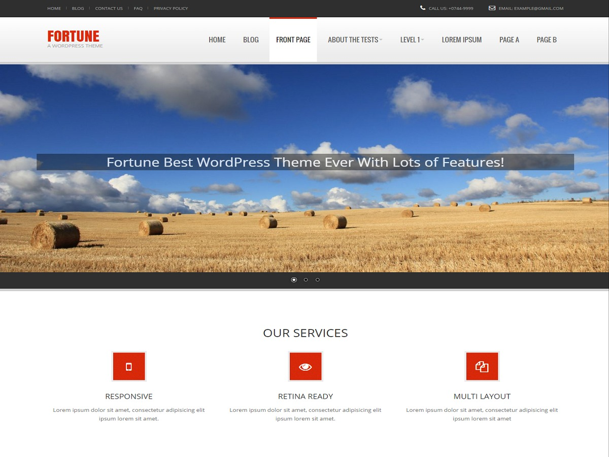 Fortune free WordPress theme
