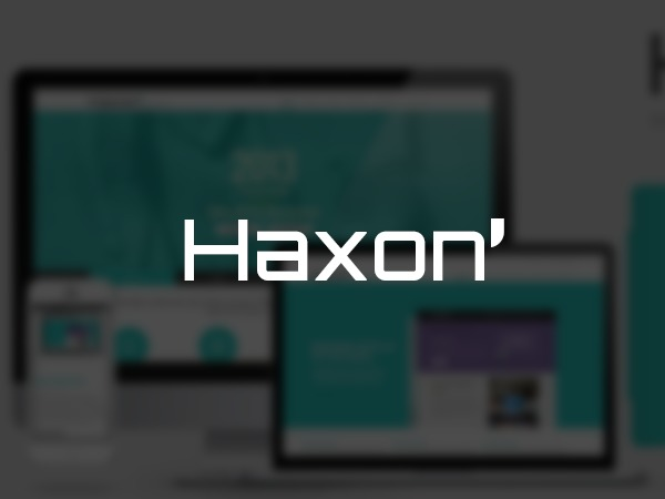HAXON WordPress template for business