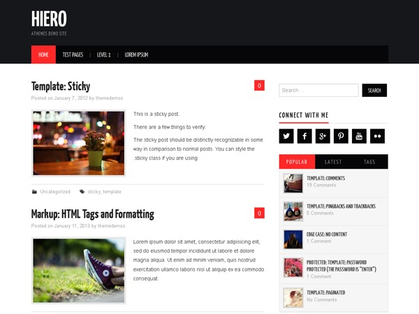 Hiero template WordPress free
