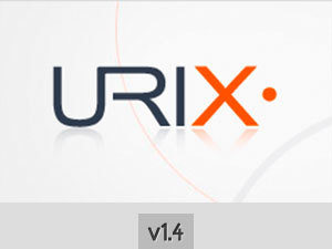 Infringe company WordPress theme