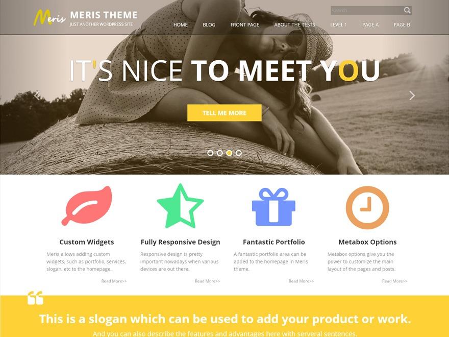 Meris Pro personal WordPress theme