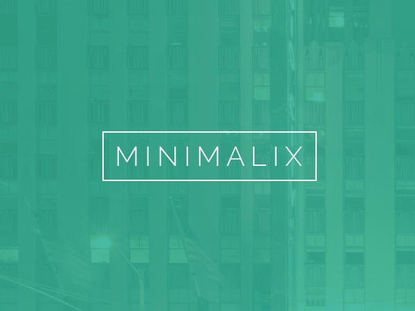 MinimaliX premium WordPress theme