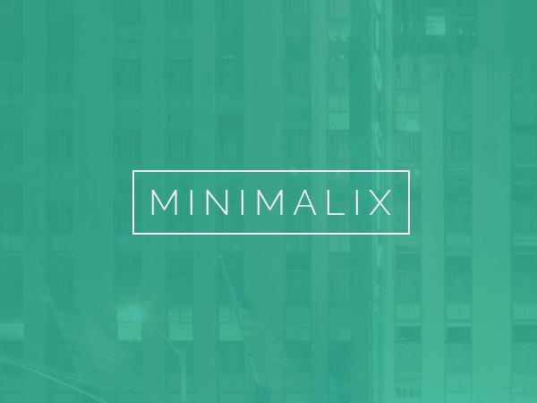 MinimaliX premium WordPress theme