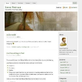 MistyLook theme WordPress