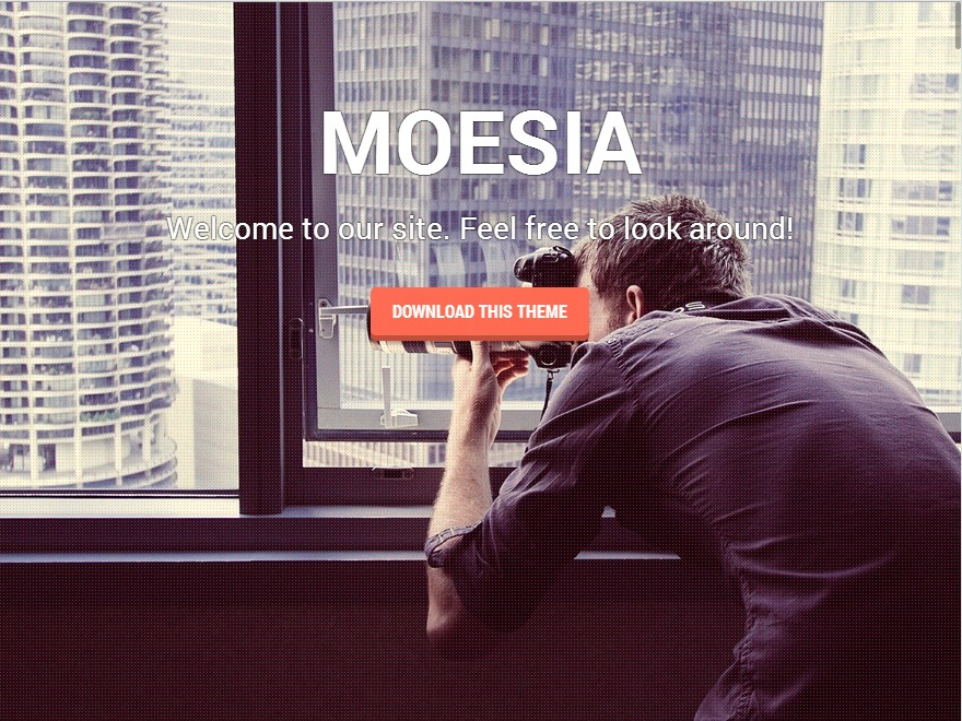 Moesia Pro WordPress template for business