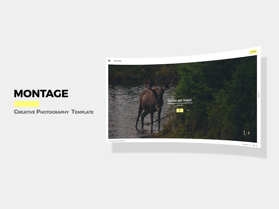 Montage best portfolio WordPress theme