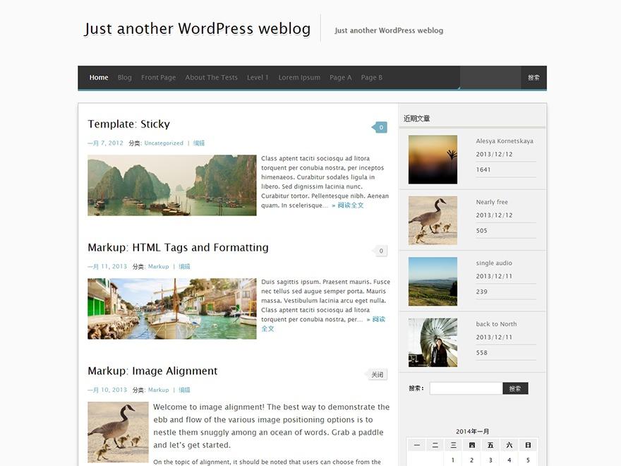 MxS WordPress website template