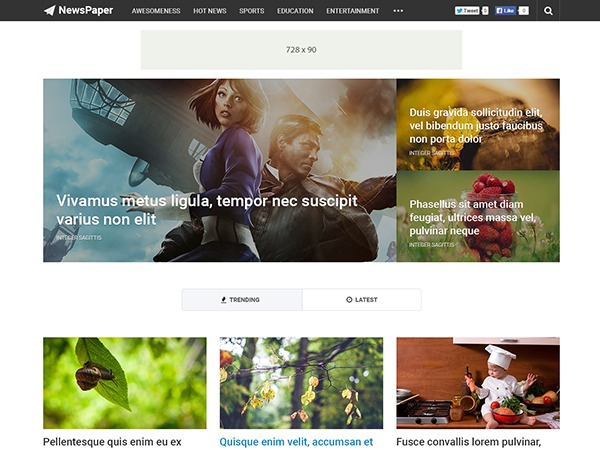 NewsPaper by MyThemeShop WordPress store theme