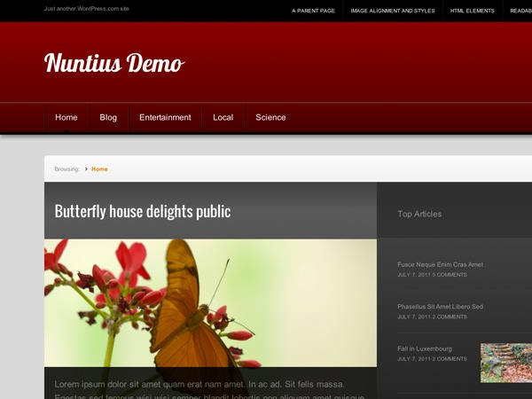 Nuntius WordPress news theme