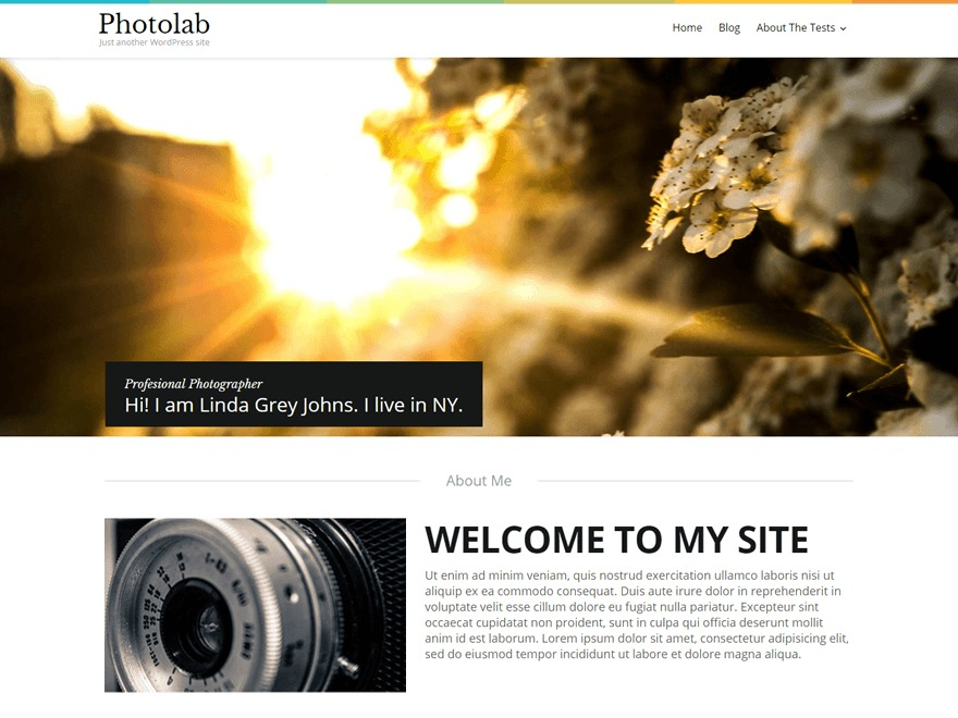 Photolab template WordPress free