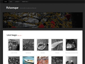 Picturesque best WordPress gallery