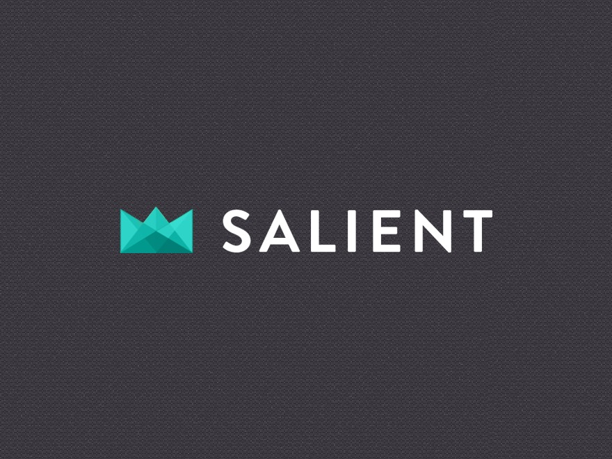 Salient WordPress theme design