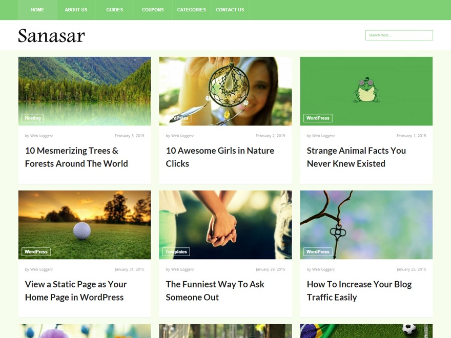 Sanasar WordPress news template