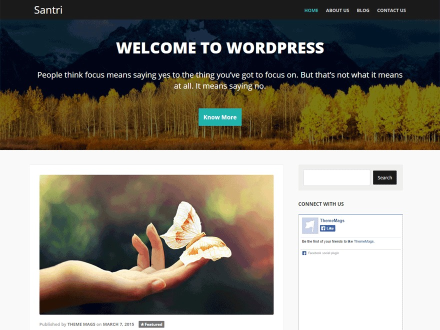 Santri best WooCommerce theme