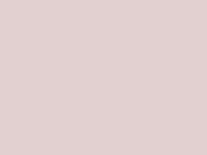 Tasty theme WordPress