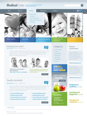 Theme WordPress WordPress Theme 1321