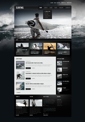 theme1562 WP template