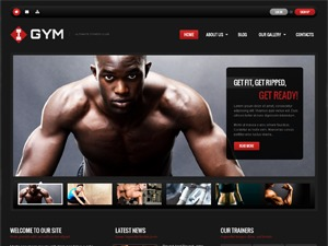 theme45051 WordPress page template