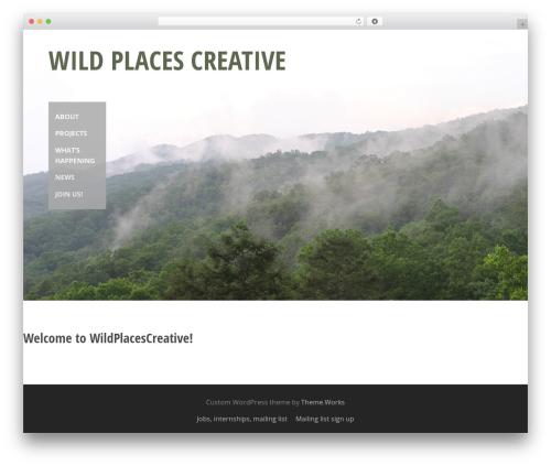 themeworks top WordPress theme - wildplacescreative.com