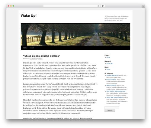 Twenty Ten WordPress free download - wakeup.org