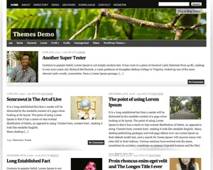 Vina best WordPress magazine theme